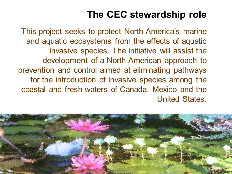 This project seeks to protect North Americas marine and aquatic ecosystems from the effects of aquatic invasive species.