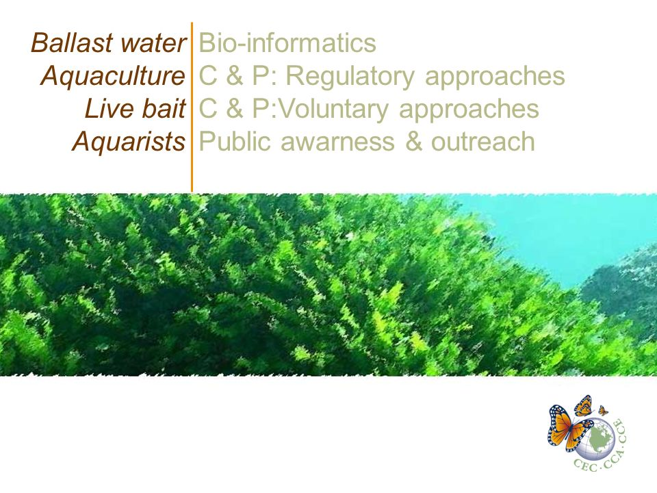 Ballast water Aquaculture Live bait Aquarists Bio-informatics C & P: Regulatory approaches C & P:Voluntary approaches Public awarness & outreach