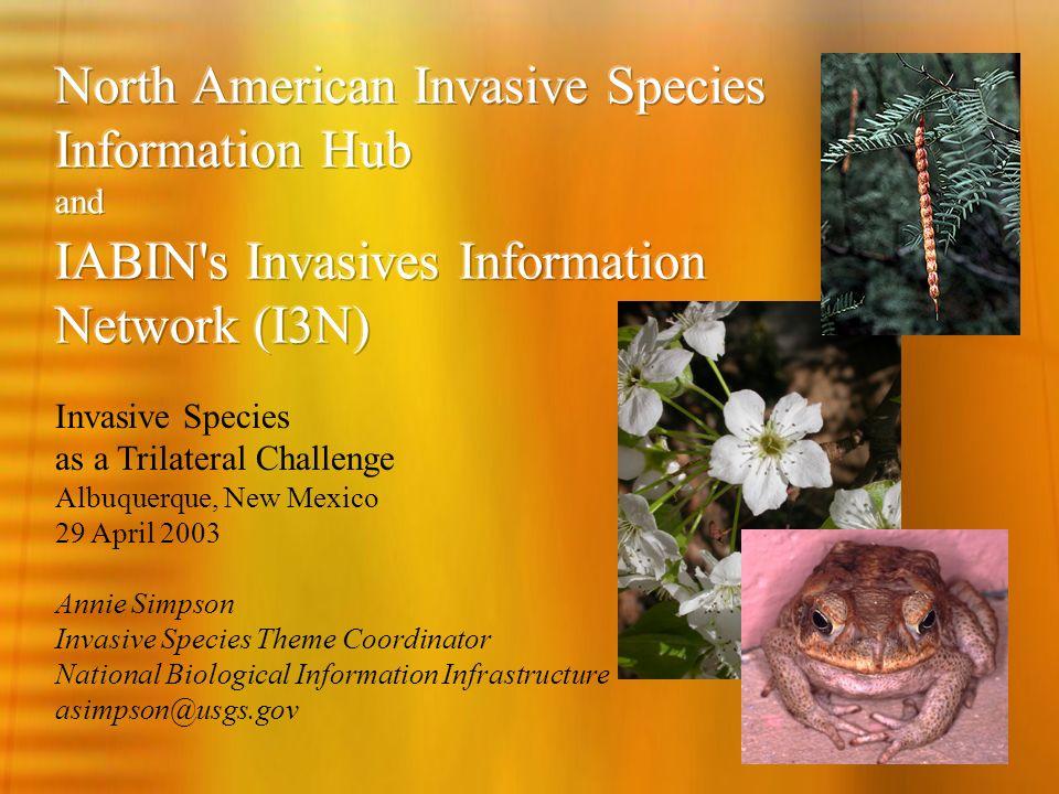 Annie Simpson Invasive Species Theme Coordinator National Biological Information Infrastructure asimpson@usgs.gov Invasive Species as a Trilateral Challenge Albuquerque, New Mexico 29 April 2003