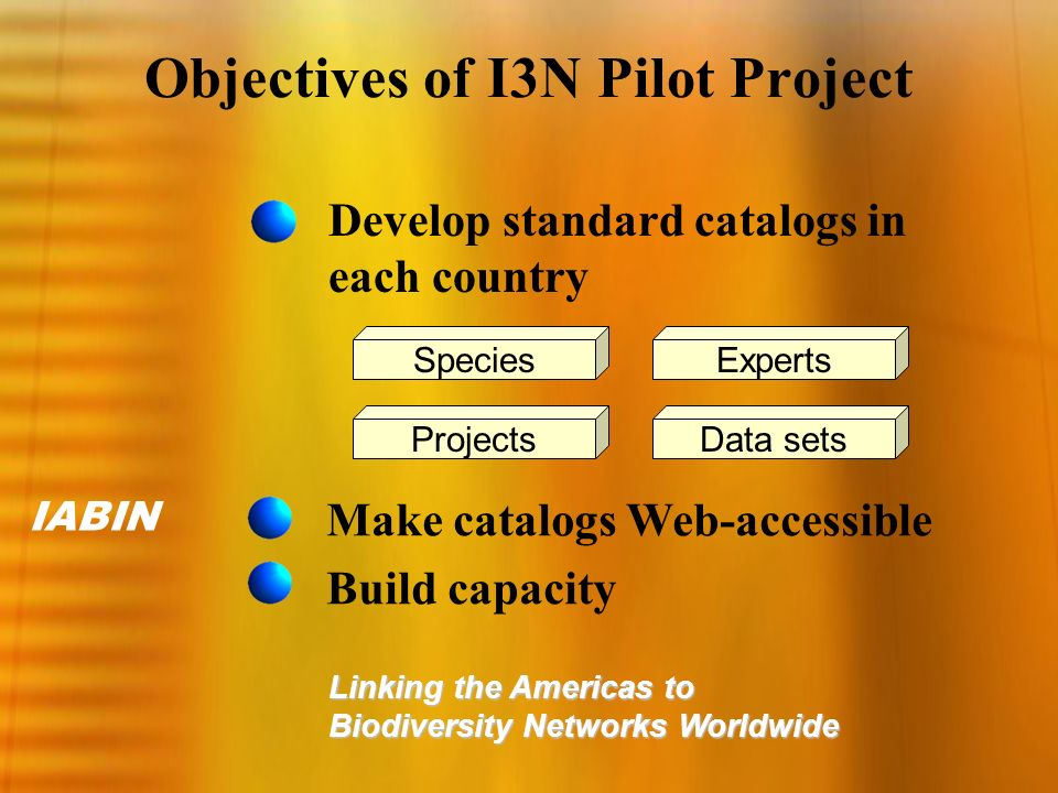 IABIN Linking the Americas to Biodiversity Networks Worldwide Species ProjectsData sets Experts Objectives of I3N Pilot Project Develop standard catal