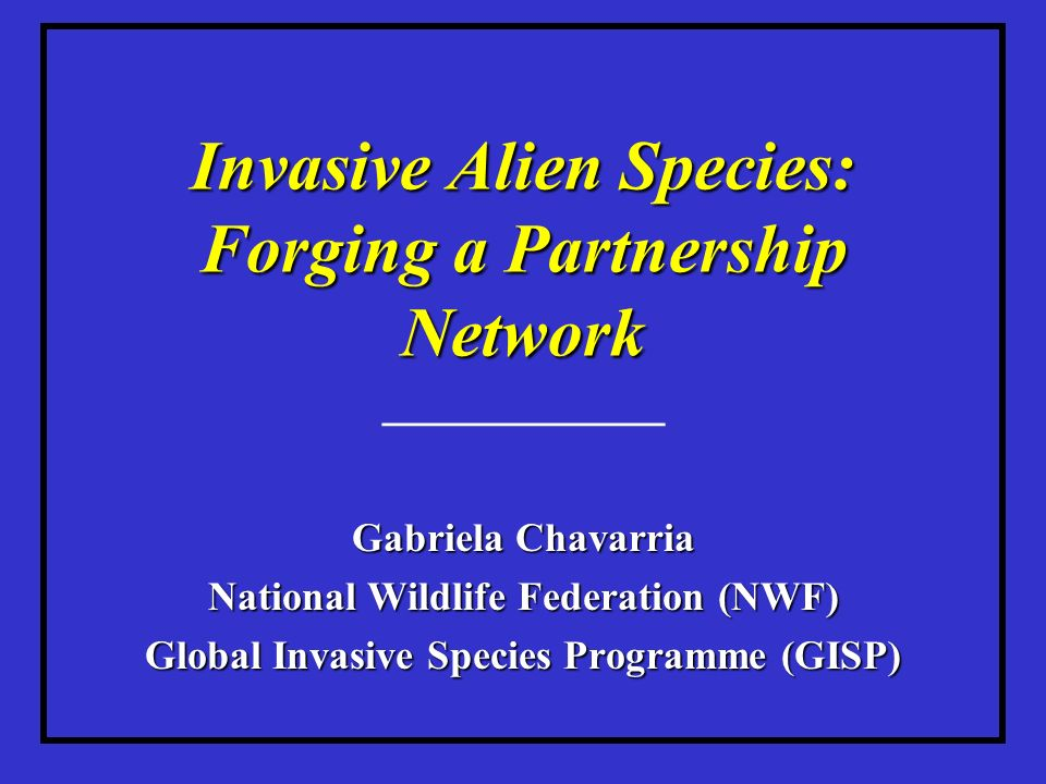 Invasive Alien Species: Forging a Partnership Network ____________ Gabriela Chavarria National Wildlife Federation (NWF) Global Invasive Species Programme (GISP)