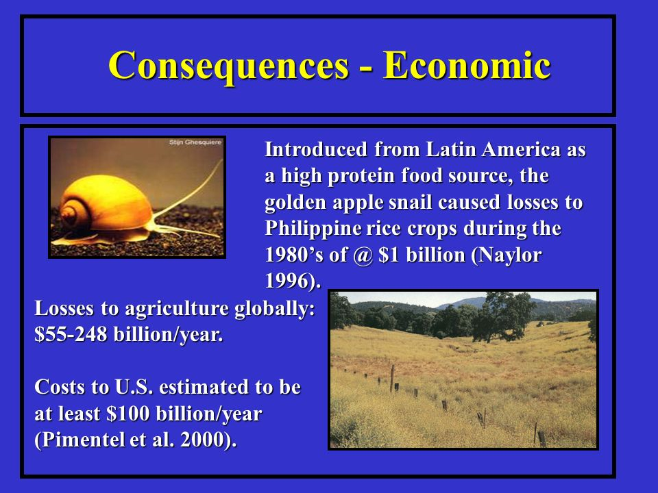 Consequences - Economic Losses to agriculture globally: $ billion/year.