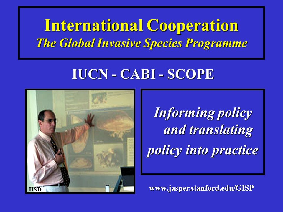 International Cooperation The Global Invasive Species Programme Informing policy and translating policy into practice IUCN - CABI - SCOPE IISD