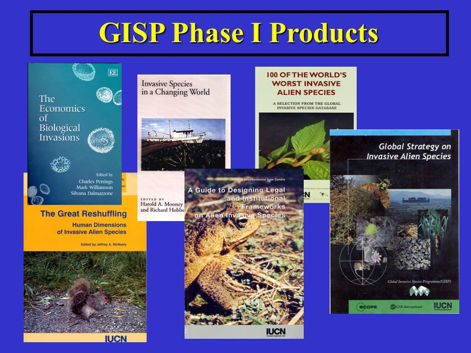 GISP Phase I Products