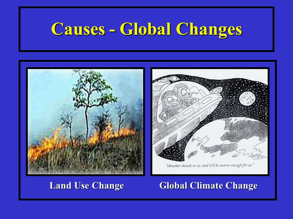Causes - Global Changes Global Climate Change Land Use Change