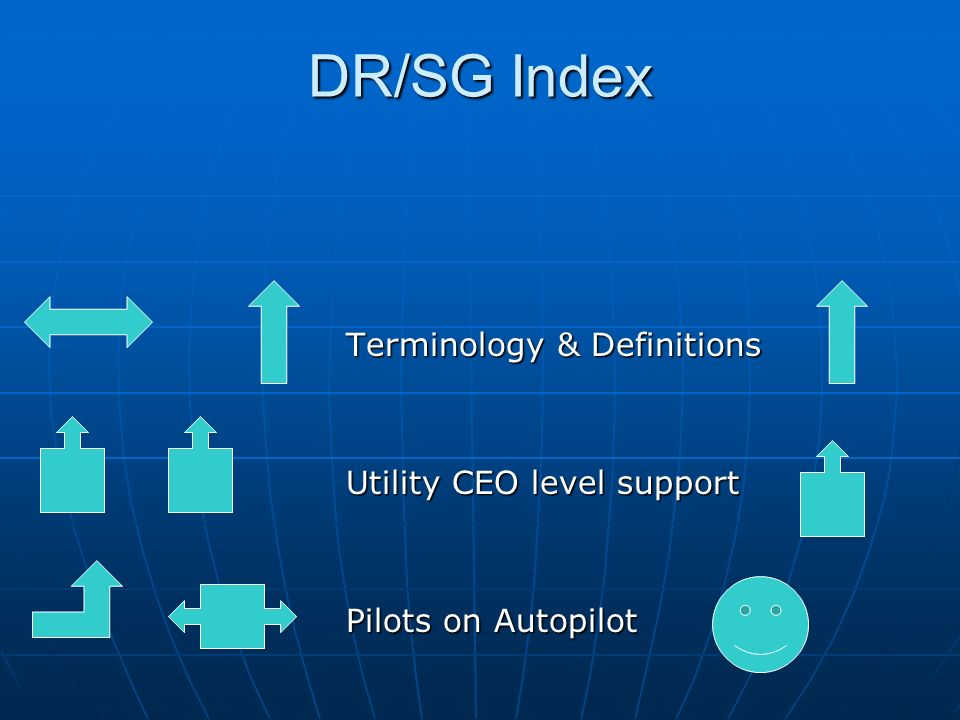DR/SG Index Terminology & Definitions Utility CEO level support Pilots on Autopilot