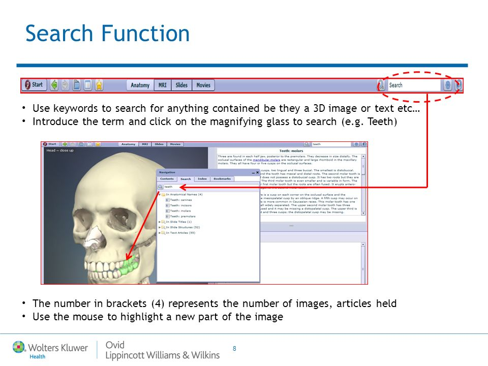 8 Use keywords to search for anything contained be they a 3D image or text etc… Introduce the term and click on the magnifying glass to search (e.g.