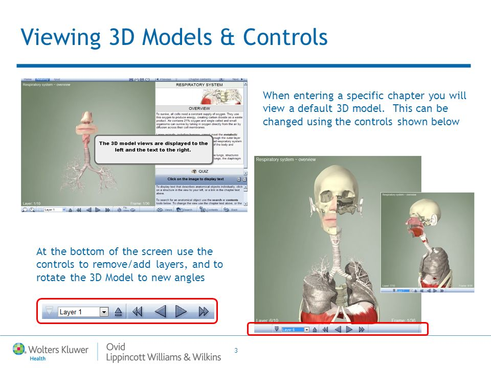 4 Chapter Text Each Chapter is a collection of 3D views, each starting with its own Overview Click on any structure in the 3D Model and it will be highlighted in Green.