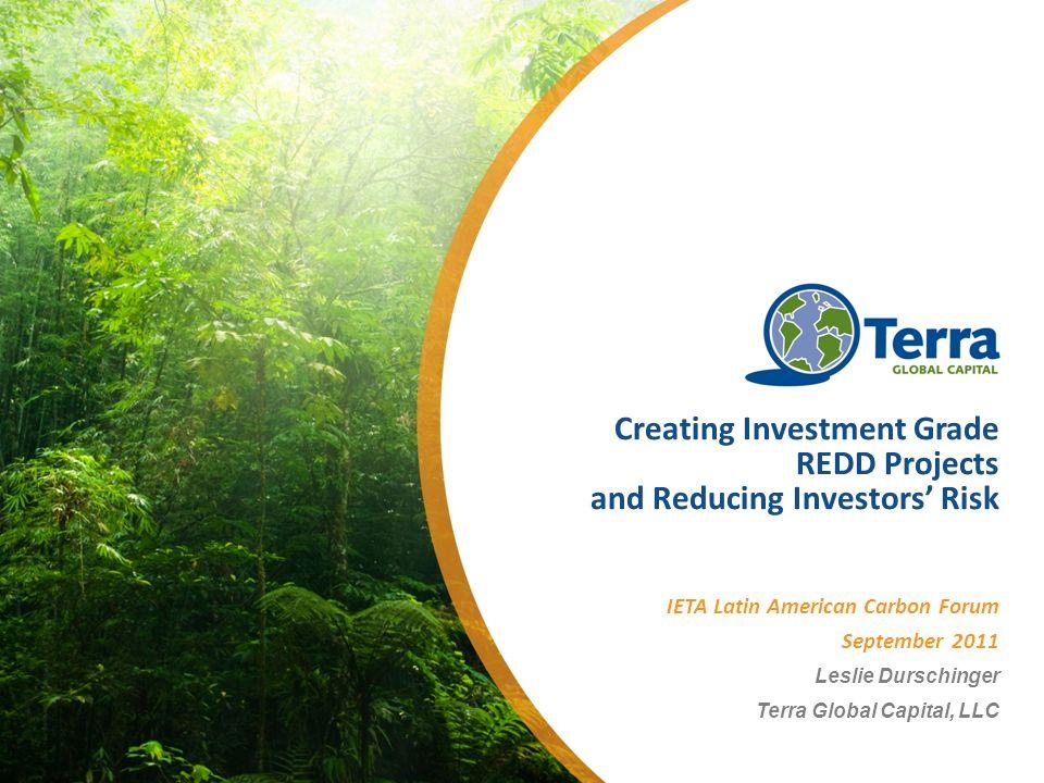 Creating Investment Grade REDD Projects and Reducing Investors Risk IETA Latin American Carbon Forum September 2011 Leslie Durschinger Terra Global Capital, LLC