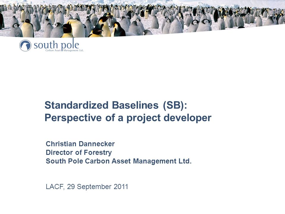 Standardized Baselines (SB): Perspective of a project developer Christian Dannecker Director of Forestry South Pole Carbon Asset Management Ltd.