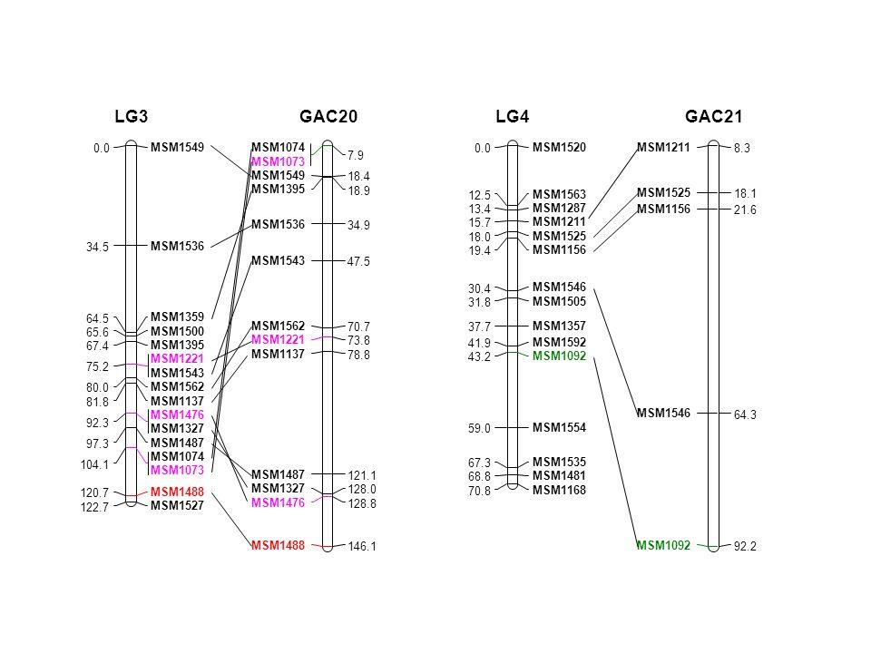 MSM1549 0.0 MSM1536 34.5 MSM1359 64.5 MSM1500 65.6 MSM1395 67.4 MSM1221 MSM1543 75.2 MSM1562 80.0 MSM1137 81.8 MSM1476 MSM1327 92.3 MSM1487 97.3 MSM1074 MSM1073 104.1 MSM1488 120.7 MSM1527 122.7 LG3 MSM1074 MSM1073 7.9 MSM1549 18.4 MSM1395 18.9 MSM1536 34.9 MSM1543 47.5 MSM1562 70.7 MSM1221 73.8 MSM1137 78.8 MSM1487 121.1 MSM1327 128.0 MSM1476 128.8 MSM1488 146.1 GAC20 MSM1520 0.0 MSM1563 12.5 MSM1287 13.4 MSM1211 15.7 MSM1525 18.0 MSM1156 19.4 MSM1546 30.4 MSM1505 31.8 MSM1357 37.7 MSM1592 41.9 MSM1092 43.2 MSM1554 59.0 MSM1535 67.3 MSM1481 68.8 MSM1168 70.8 LG4 MSM1211 8.3 MSM1525 18.1 MSM1156 21.6 MSM1546 64.3 MSM1092 92.2 GAC21