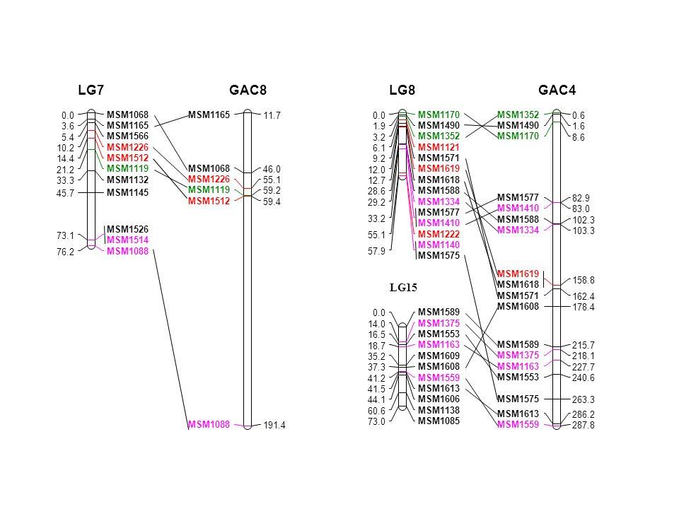 LG15 MSM1068 0.0 MSM1165 3.6 MSM1566 5.4 MSM1226 10.2 MSM1512 14.4 MSM1119 21.2 MSM1132 33.3 MSM1145 45.7 MSM1526 MSM1514 73.1 MSM1088 76.2 LG7 MSM116