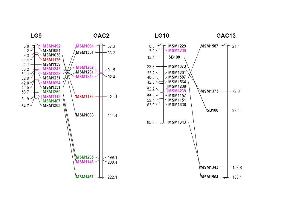 MSM1492 0.0 MSM1084 1.2 MSM1638 9.3 MSM1176 11.4 MSM1159 24.1 MSM1243 30.2 MSM1232 31.1 MSM1231 32.9 MSM1094 42.0 MSM1351 42.5 MSM1265 58.7 MSM1148 MSM1467 61.9 MSM1303 64.7 LG9 MSM1094 57.3 MSM1351 66.2 MSM1232 MSM1231 91.5 MSM1243 92.4 MSM1176 121.1 MSM1638 144.4 MSM1265 199.1 MSM1148 200.4 MSM1467 222.1 GAC2 MSM1229 0.0 MSM1230 3.0 SB108 13.1 MSM1373 23.3 MSM1201 33.2 MSM1587 40.3 MSM1564 42.3 MSM1238 MSM1239 52.2 MSM1157 55.1 MSM1151 59.1 MSM1636 63.0 MSM1343 85.3 LG10 MSM1587 21.4 MSM1373 72.3 SB108 93.4 MSM1343 156.8 MSM1564 168.1 GAC13