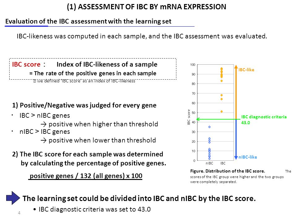 4 IBC score Index of IBC-likeness of a sample = The rate of the positive genes in each sample nIBC IBC genes positive when lower than threshold 1) Positive/Negative was judged for every gene positive genes / 132 (all genes) x 100 2) The IBC score for each sample was determined by calculating the percentage of positive genes.