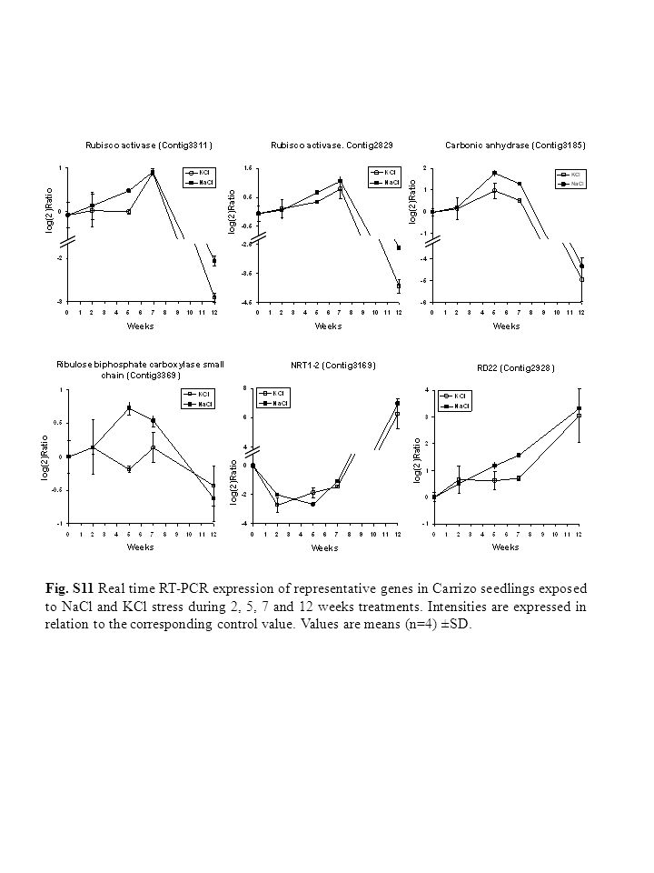 Fig. S11 Real time RT-PCR expression of representative genes in Carrizo seedlings exposed to NaCl and KCl stress during 2, 5, 7 and 12 weeks treatment