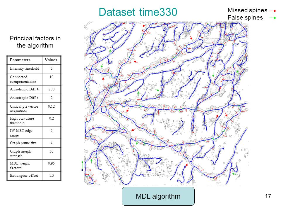 Dataset time330 Principal factors in the algorithm ParametersValues Intensity threshold2 Connected components size 10 Anisotropic Diff k800 Anisotropi