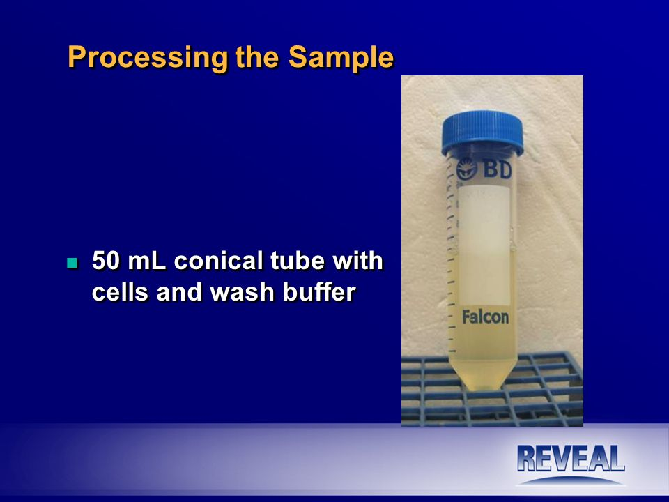 n 50 mL conical tube with cells and wash buffer Processing the Sample