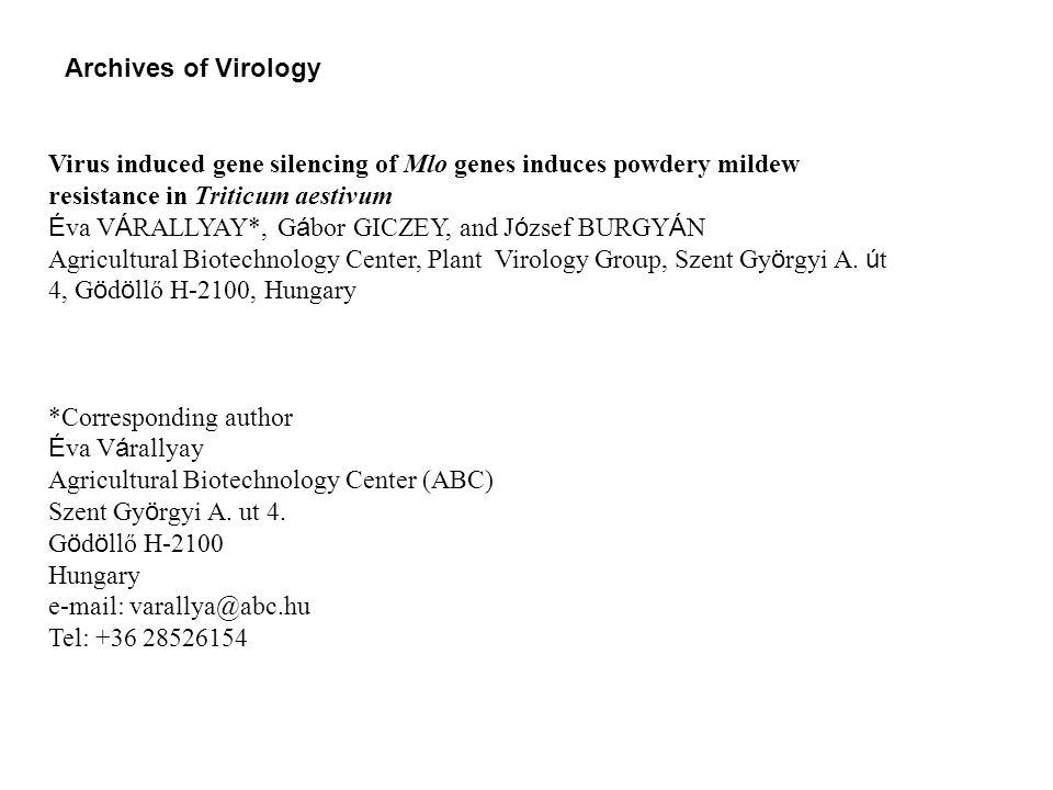 Bezosztaja M 1 2 3 4 5 6 M 1 2 3 4 5 6 M 1 2 3 4 5 6 Mv Táltos Chul Mv Hombár HvParisAxminster M 1 2 3 4 5 6 M 1 2 3 4 5 6 M 1 2 3 4 5 6 Online Resource Fig.1 Screening of wheat cultivars for BSMV infection.