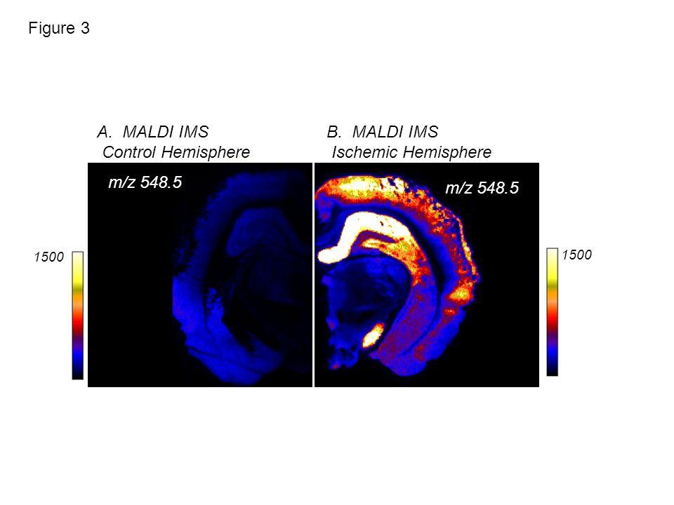 1500 B. MALDI IMS Ischemic Hemisphere A.MALDI IMS Control Hemisphere m/z 548.5 Figure 3