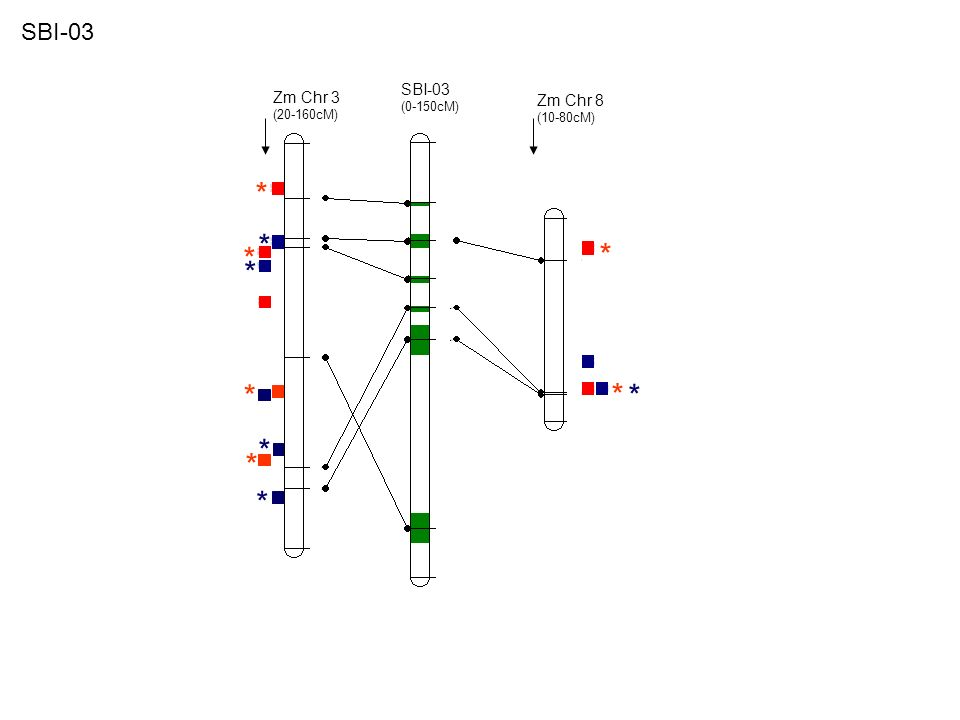 Zm Chr 5 (50-100cM) Zm Chr 4 (40-120cM) SBI-04 (0-120cM) * * * * * SBI-04