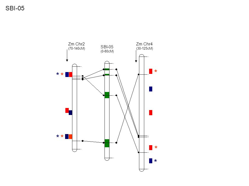 Zm Chr2 (50-90cM) Zm Chr10 (30-80cM) SBI-06 (0-90cM) * * * * * SBI-06
