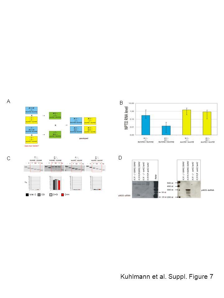 Kuhlmann et al. Suppl. Figure 7 A B C D total CCGCHGCHH