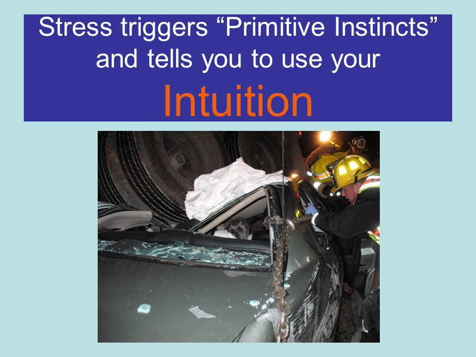 Stress triggers Primitive Instincts and tells you to use your Intuition