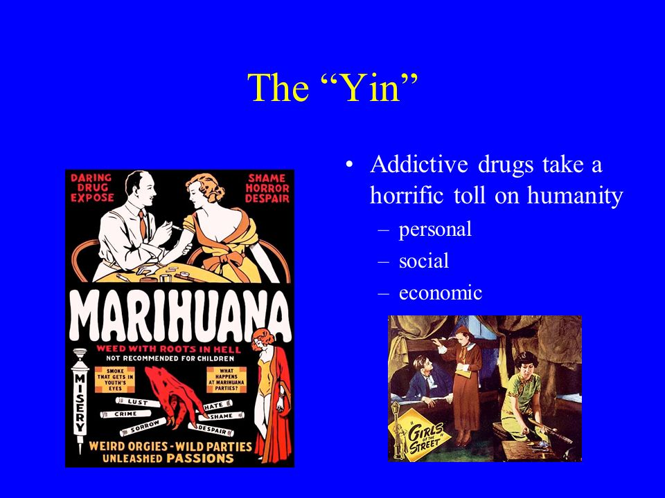 The Yin Addictive drugs take a horrific toll on humanity –personal –social –economic