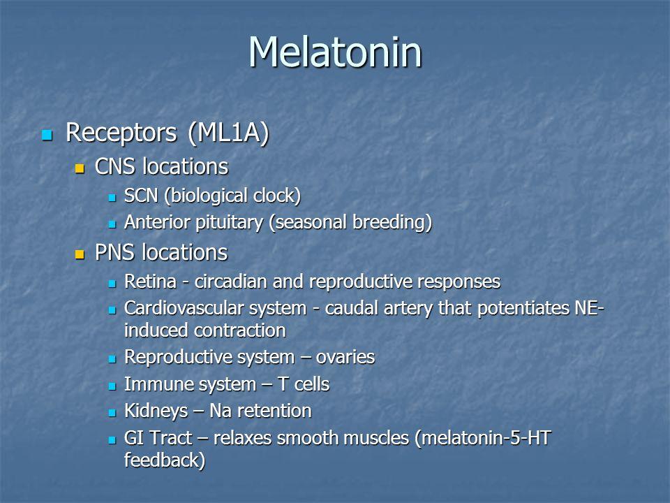 Melatonin Receptors (ML1A) Receptors (ML1A) CNS locations CNS locations SCN (biological clock) SCN (biological clock) Anterior pituitary (seasonal bre