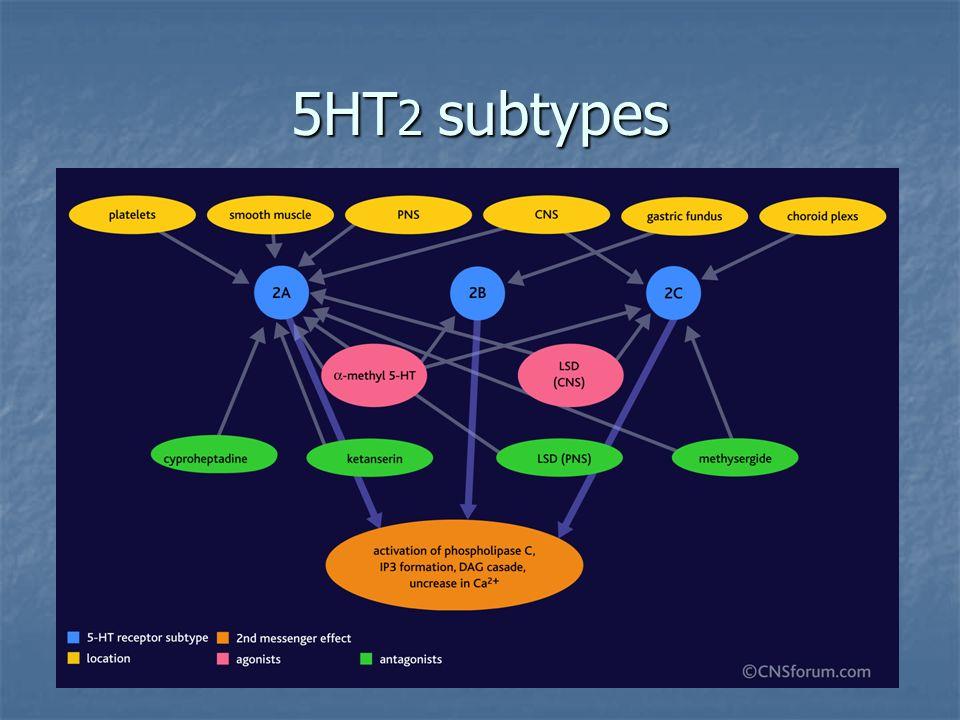5HT 2 subtypes