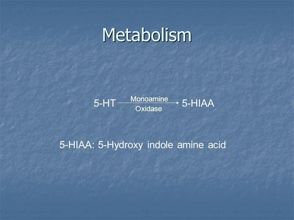 Metabolism 5-HT5-HIAA Monoamine Oxidase 5-HIAA: 5-Hydroxy indole amine acid
