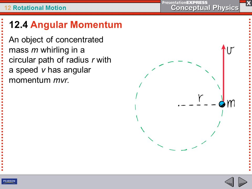 12 Rotational Motion An object of concentrated mass m whirling in a circular path of radius r with a speed v has angular momentum mvr. 12.4 Angular Mo