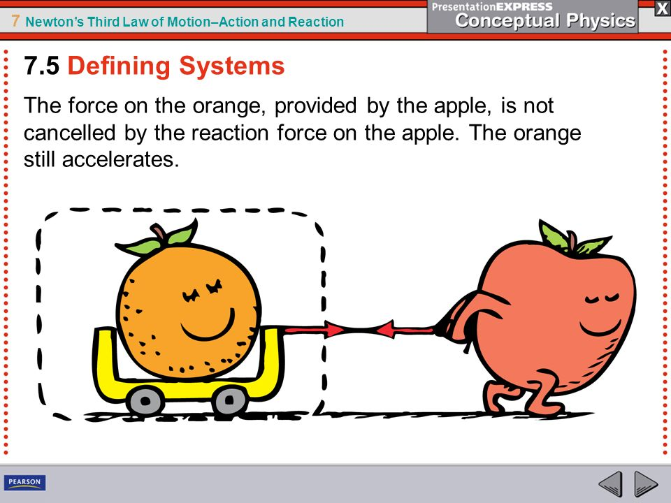 7 Newtons Third Law of Motion–Action and Reaction The force on the orange, provided by the apple, is not cancelled by the reaction force on the apple.