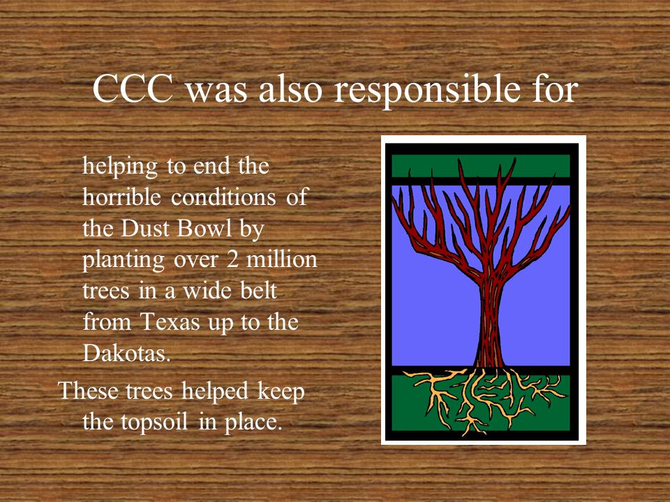 Civilian Conservation Corps Took needy young men off the streets and put them to work in forests and national parks Many of these are still in use today - look for the CCC signs.