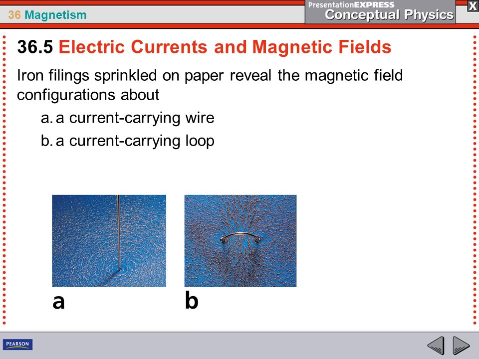 36 Magnetism Iron filings sprinkled on paper reveal the magnetic field configurations about a.a current-carrying wire b.a current-carrying loop 36.5 Electric Currents and Magnetic Fields