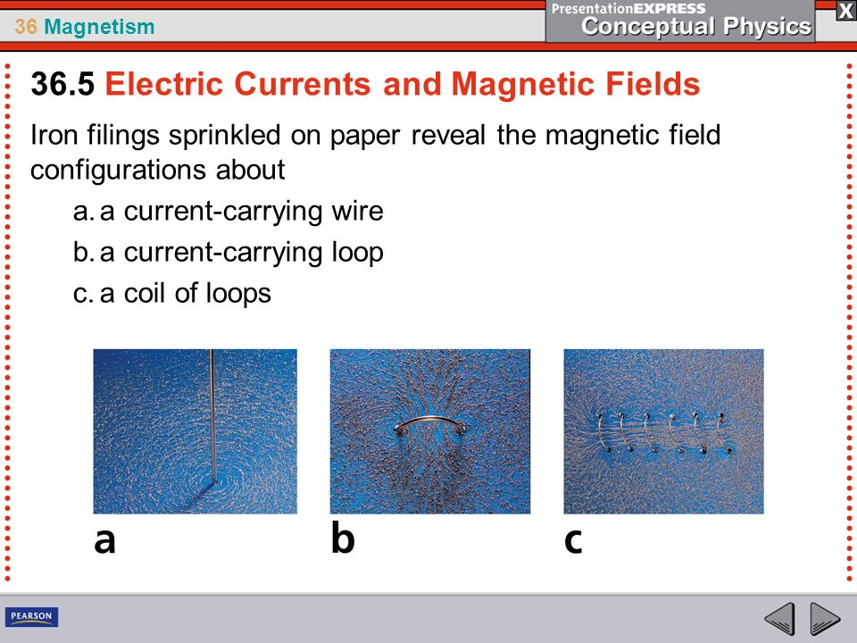 36 Magnetism Iron filings sprinkled on paper reveal the magnetic field configurations about a.a current-carrying wire b.a current-carrying loop c.a co