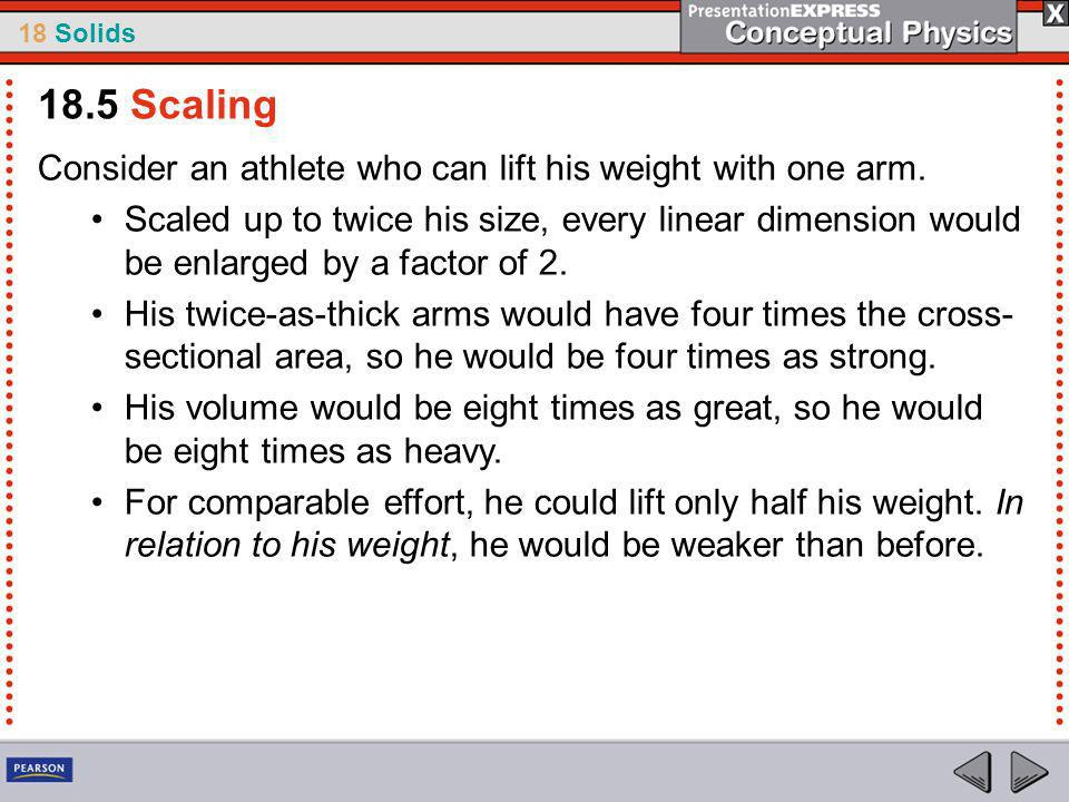 18 Solids Consider an athlete who can lift his weight with one arm.
