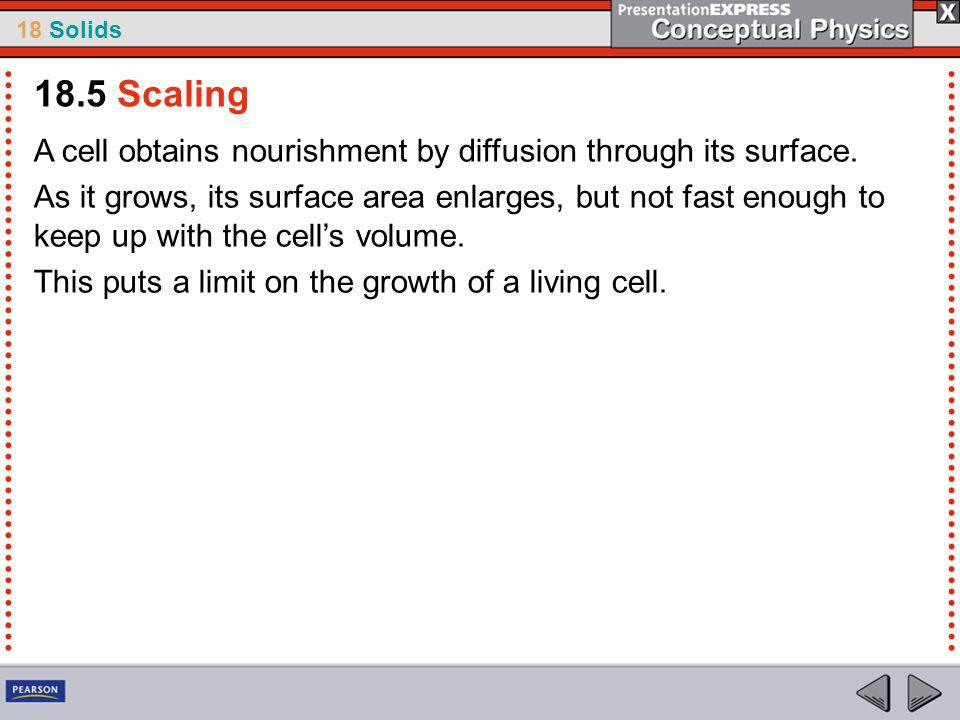18 Solids A cell obtains nourishment by diffusion through its surface.