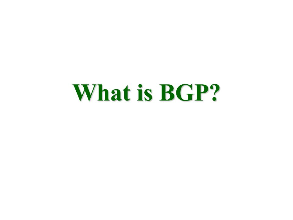 What is BGP?