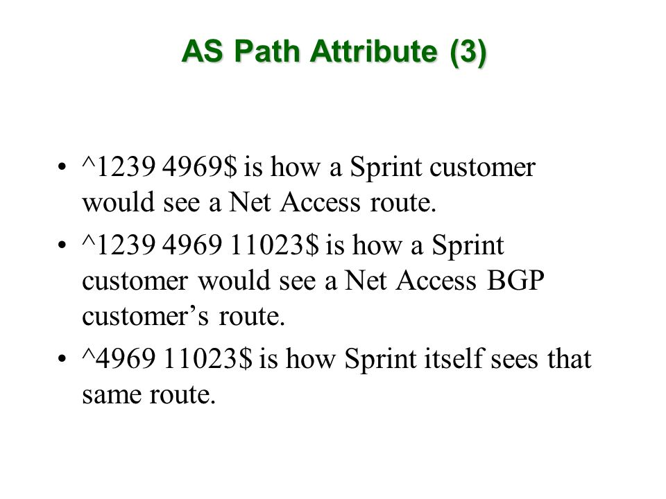 ^1239 4969$ is how a Sprint customer would see a Net Access route.