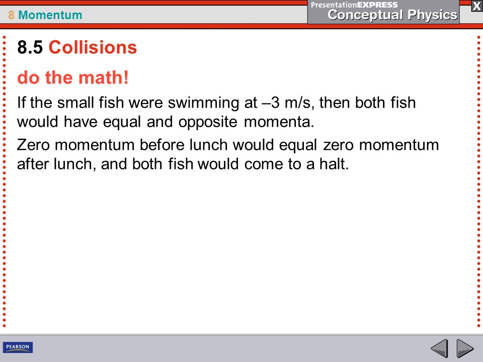 8 Momentum do the math! If the small fish were swimming at –3 m/s, then both fish would have equal and opposite momenta. Zero momentum before lunch wo