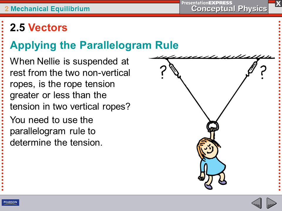 2 Mechanical Equilibrium Applying the Parallelogram Rule When Nellie is suspended at rest from the two non-vertical ropes, is the rope tension greater