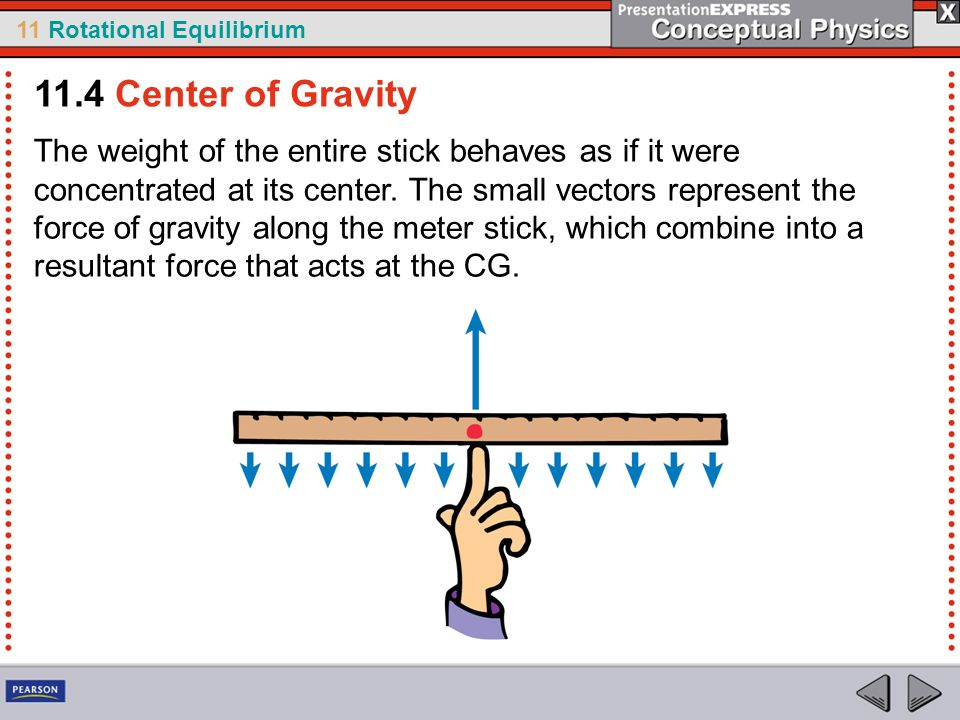 11 Rotational Equilibrium The weight of the entire stick behaves as if it were concentrated at its center. The small vectors represent the force of gr