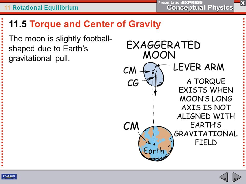 11 Rotational Equilibrium The moon is slightly football- shaped due to Earths gravitational pull. 11.5 Torque and Center of Gravity