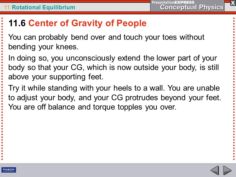 11 Rotational Equilibrium You can probably bend over and touch your toes without bending your knees. In doing so, you unconsciously extend the lower p
