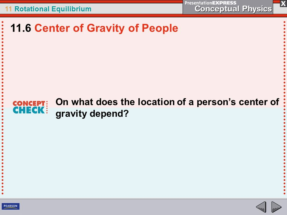 11 Rotational Equilibrium On what does the location of a persons center of gravity depend? 11.6 Center of Gravity of People