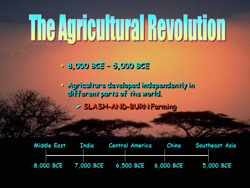 8,000 BCE – 5,000 BCE Agriculture developed independently in different parts of the world. SLASH-AND-BURN Farming Middle East India Central America Ch