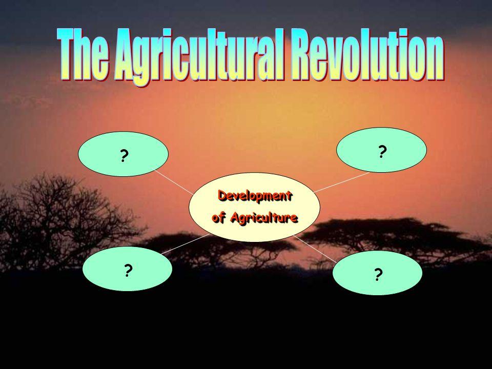 Development of Agriculture Development ? ? ? ?