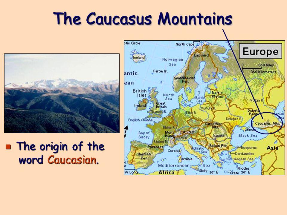 The Caucasus Mountains e The origin of the word Caucasian.