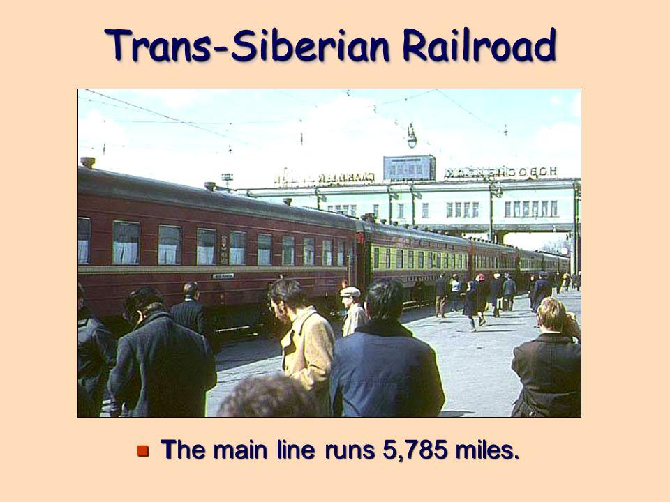 Trans-Siberian Railroad The main line runs 5,785 miles. The main line runs 5,785 miles.
